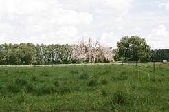 Southern ISH7